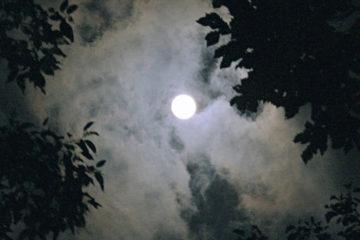 Come-superare-la-paura-dell'oscurità-con-un'esperienza-borderline-in-Natura_WildWisdom_Blog