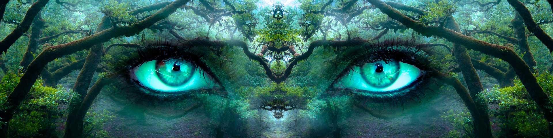 Come-risvegliare-il-potere-dell'intuizione-per-un-salto-quantico-nella-tua-evoluzione-personale-WildWisdom-Blog