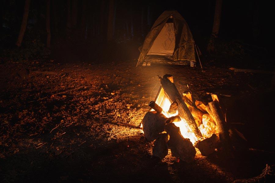 Dormire-di-notte-nel-bosco-da-solo-l'antidoto-per-superare-la-paura-del-buio-WildWisdom-Blog